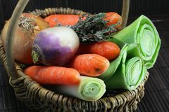 Vegetables for the preparation of a French meal Stock Images