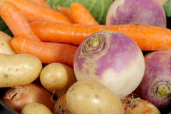 Vegetables for the preparation of pot-au-feu Royalty Free Stock Images