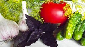 Vegetables for preservation. Vegetables for preservation and greens on wooden background stock images