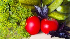 Vegetables for preservation. Vegetables for preservation and greens on wooden background stock photography