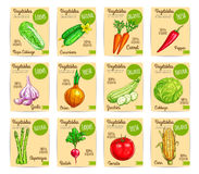 Vegetables price cards farm organic vector set Stock Images