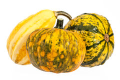 Vegetables of pumpkin decorative isolated on white background Royalty Free Stock Images