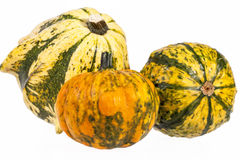 Vegetables of pumpkin decorative isolated on white background Royalty Free Stock Photography
