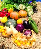 Vegetables. Pumpkin eggplant cabbage sweet peppers cucumber Stock Photo