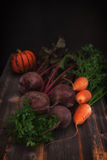 Vegetables and pumpkin a low key in style rustic. Fresh vegetables and pumpkin a low key in style a rustic stock photos