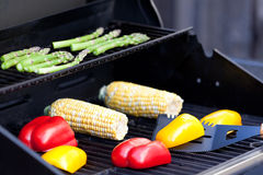 Vegetables ready for grilling Royalty Free Stock Photo
