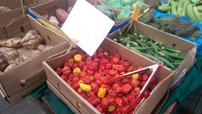 Vegetables. Red dried pepper at the local market and others vegetables royalty free stock photo