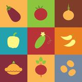 Vegetables retro icons square Royalty Free Stock Photography
