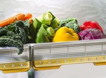 Vegetables in retro refrigerator bin Royalty Free Stock Photos
