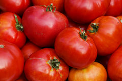 Vegetables   ripe  tomatoes Royalty Free Stock Photos