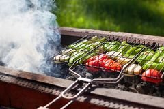 Vegetables roasted on grill on charcoal, smoke from fire, nature, green grass background, green peppers, zucchini, red tomatos royalty free stock photo