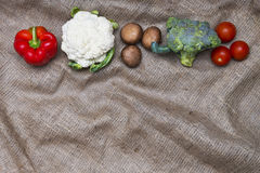 Vegetables on rustic cloth background. Fresh vegetables line on rustic homemade sackcloth background Royalty Free Stock Image