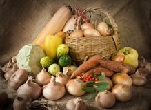 Vegetables on sacking. Still life from harvested onion and vegetables on sacking royalty free stock photography