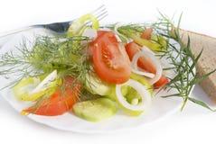 Vegetables salad royalty free stock photos
