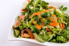 The vegetables salad. With lamb´s lettuce Royalty Free Stock Photo