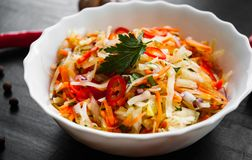 Vegetables salad with cabbage and carrot in bowl on a dark wooden background. Fresh vegetables salad with cabbage and carrot in bowl on a dark wooden background Stock Image