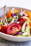 Vegetables salad closeup with tomatoes, onion , cucumber and ore Stock Photography