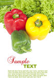 Vegetables(Salad and colorful pepper). With sample text stock image