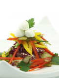 Vegetables salad with mozzarella. On a dish Stock Images