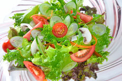 Vegetables salad Royalty Free Stock Image
