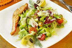 Vegetables salad with salmon Royalty Free Stock Photos