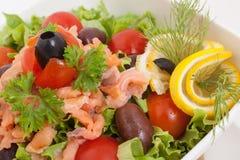 Vegetables salad with smoked salmon and lemon Stock Image