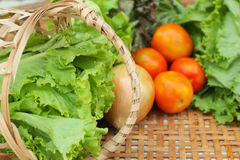 Vegetables salad and tomato in the basket Royalty Free Stock Photo
