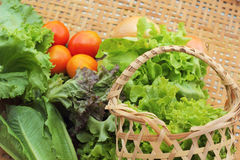 Vegetables salad and tomato in the basket Stock Image