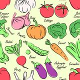Vegetables seamless Stock Images