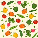 Vegetables seamless vector pattern Stock Photography