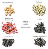 Vegetables seeds- varieties royalty free stock photos