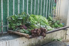Vegetables on sell in the street. Cuban travel imagery. Delisiuos stock photography