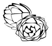 Vegetables series: artichokes. Black and white illustration of artichokes royalty free illustration