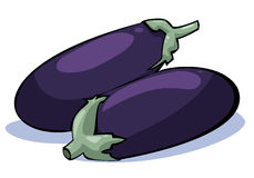 Vegetables series: aubergine - eggplant. Colorful illustration of aubergine - eggplant on white background vector illustration