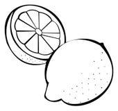 Vegetables series: lemons. Black and white illustration of lemons royalty free illustration