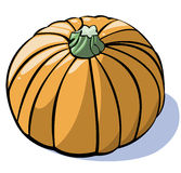 Vegetables series: pumpkin. Colorful illustration of a pumpkin on white background Stock Photography