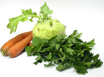 Vegetables' set. Kohlrabi carrot and green parsley Stock Photos