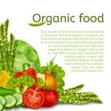 Vegetables Set Background Royalty Free Stock Images