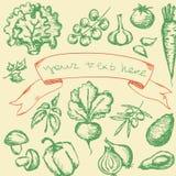 Vegetables set Stock Images