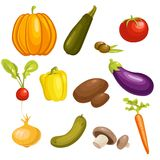 Vegetables Set isolated. Vector Illustration Royalty Free Stock Images
