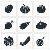Vegetables set of nine Vector Icons Stock Images
