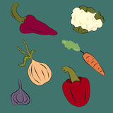 Vegetable. Paprika and carrots and cauliflower and onion, and garlic and chili pepper Stock Illustration