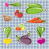 Vegetables. Set vegetables in the vector Royalty Free Stock Photo
