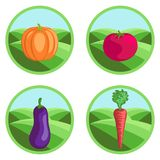 Vegetables set Royalty Free Stock Photo