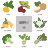Vegetables. Set 2 Stock Images