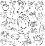 Vegetables set. Vector Illustration of vegetables in line art mode Stock Photography