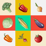 Vegetables Set. Vintage Style. Healthy Food Royalty Free Stock Images
