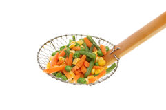 Vegetables in sieve Stock Photography