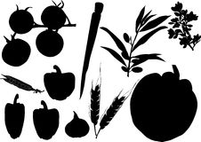 Vegetables silhouette set. Illustration with different vegetables silhouette collection isolated on white background Royalty Free Stock Photos