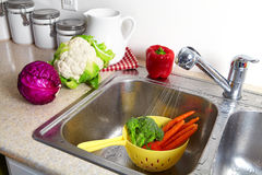 Vegetables in the sink Royalty Free Stock Photo
